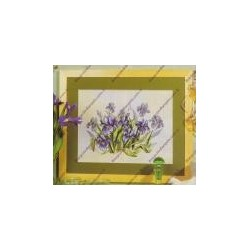 "Kit da ricamare "" Iris "" Art. 8075"