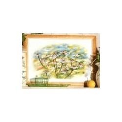 """Kit da ricamare """" Fiori di camomilla """" Orchidea Art. 8162"""