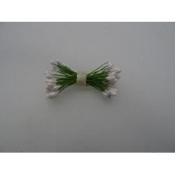 Pistilli per fiori colore bianco