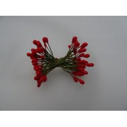 Pistilli per fiori colore rosso